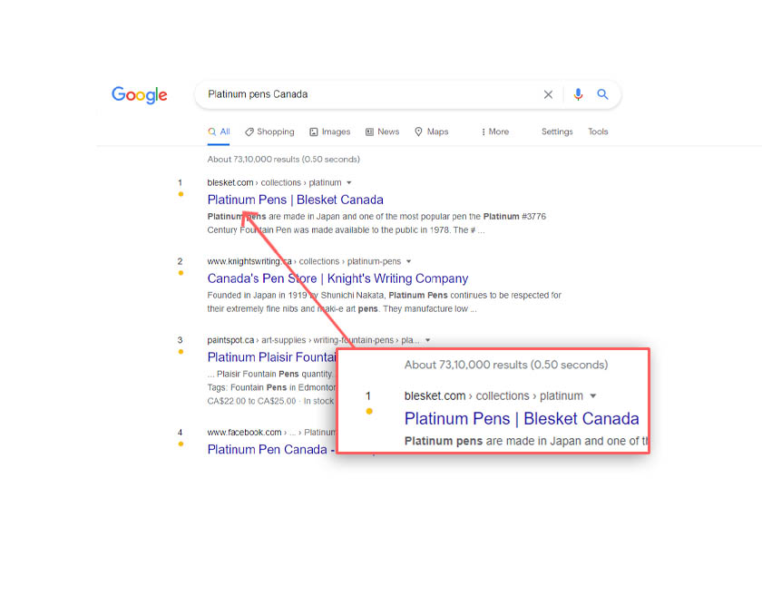 Blesket canada seo ranking - acmeinfolabs